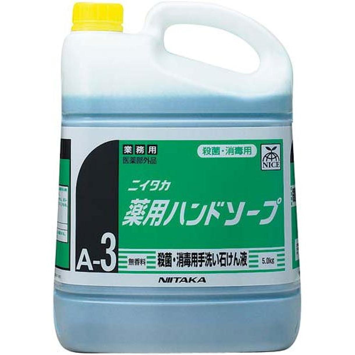 排出ガロン誠実さニイタカ 薬用ハンドソープ 5kg×3本