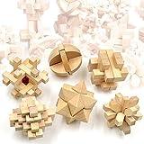 F.G.S 6種類セット 立体パズル 木製 おもちゃ カラクリ 孔明 パズル 知恵の輪 知育 木製 パズル 組み合わせ推理力パズル 創造力を鍛える 難易度高め 幼児/大人の知的玩具 F.G.S並行輸入品 …