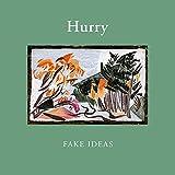 FAKE IDEAS [12 inch Analog]