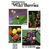 Northwestern Wild Berries