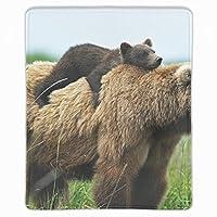 マウスパッド 2匹のクマ