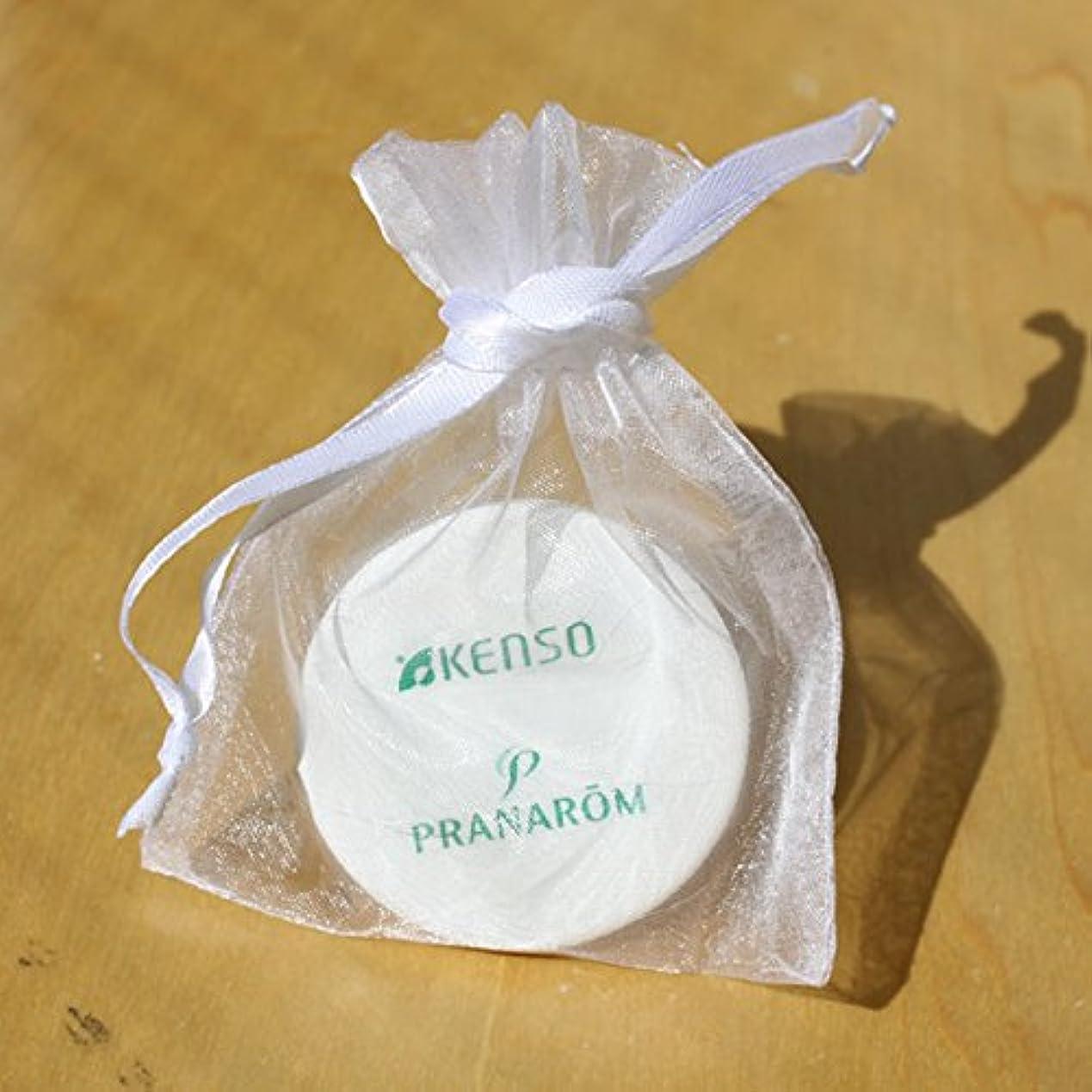 大騒ぎ挨拶するベル健草医学舎 ( KENSO ケンソー ) アロマストーン ( 携帯用小袋付ディフューザー ) 02281 アロマストーンディフューザー