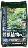 プロトリーフ 観葉植物の土 2L