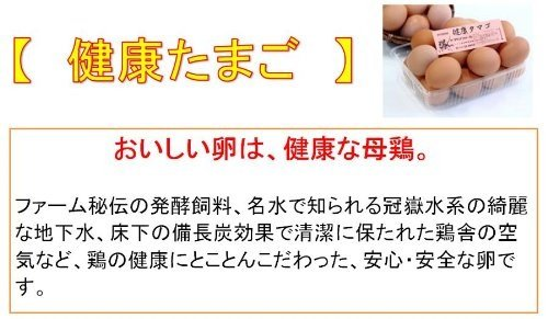 鹿児島県産 「健康たまご」 朝採り 10個(破損保証2個含む) Mサイズ 流鏑馬ファーム  (200個まで同一送料)