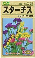 カネコ種苗 園芸・種 KS100シリーズ スターチス シヌアータ・混合 草花100 048