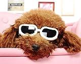 【おしゃれ♪】 小型犬 サングラス ゴーグル  トイプードル チワワ ヨークシャテリア ミニチュアダックス他 (ホワイト, XS)