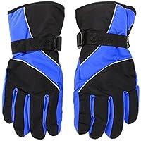 冬のアウトドアスポーツスノーボードISPのための新しいメンズスキー手袋熱防水