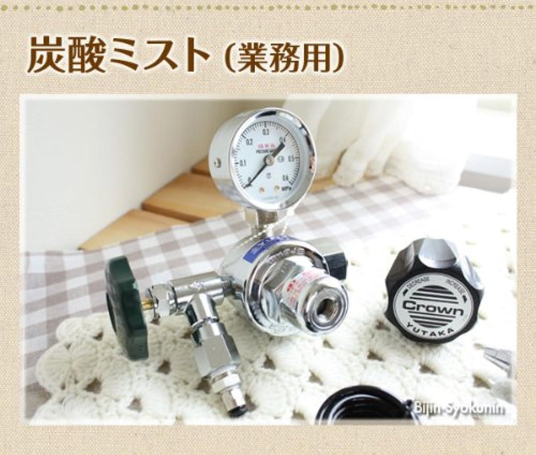 知性妻遠い炭酸ミスト【業務用】炭酸ミストシャワーをプロユースに改良大容量ボンベ5kgの使用で低コスト!