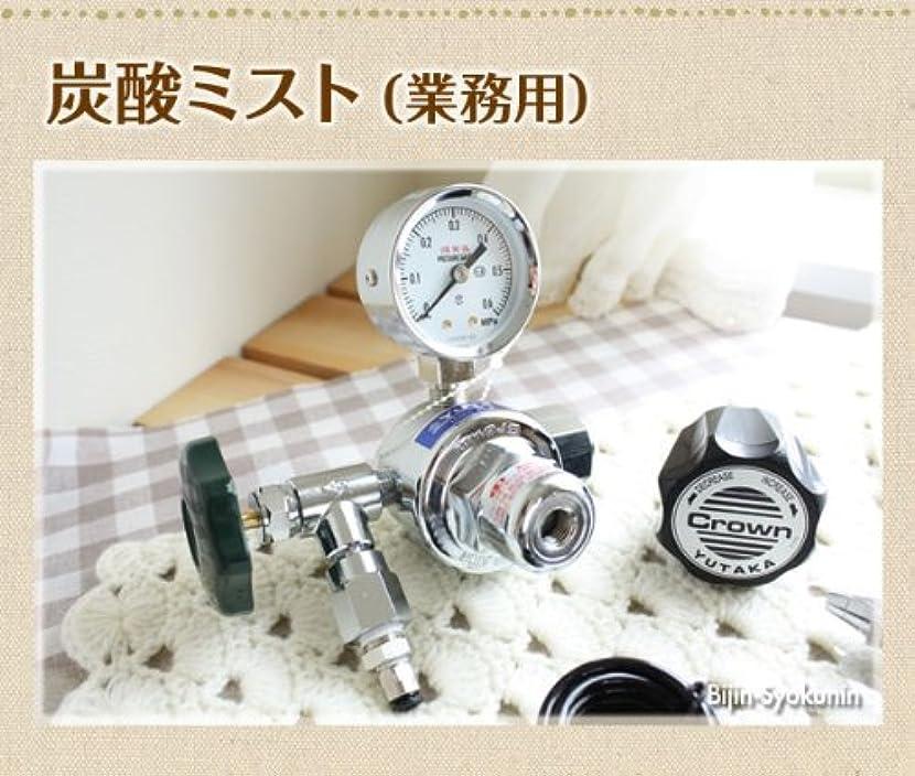 炭酸ミスト【業務用】炭酸ミストシャワーをプロユースに改良大容量ボンベ5kgの使用で低コスト!