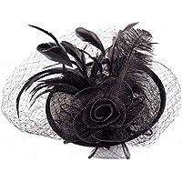 Hat - Ladies' Autumn and Winter Headwear Hemp Women's Hat Western Banquet Mesh Feather Headdress (Color : Black, Size : As Shown)