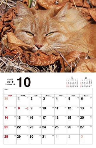 ボス猫カレンダー2018 ([カレンダー])