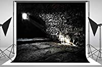 Scary Underground Old Castle Cellar 地下室 背景 絵画クロス コンピュータプリント 誕生日パーティー 背景 ly-785484478