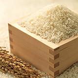 米 白米 コシヒカリ 平成28年産 5kg