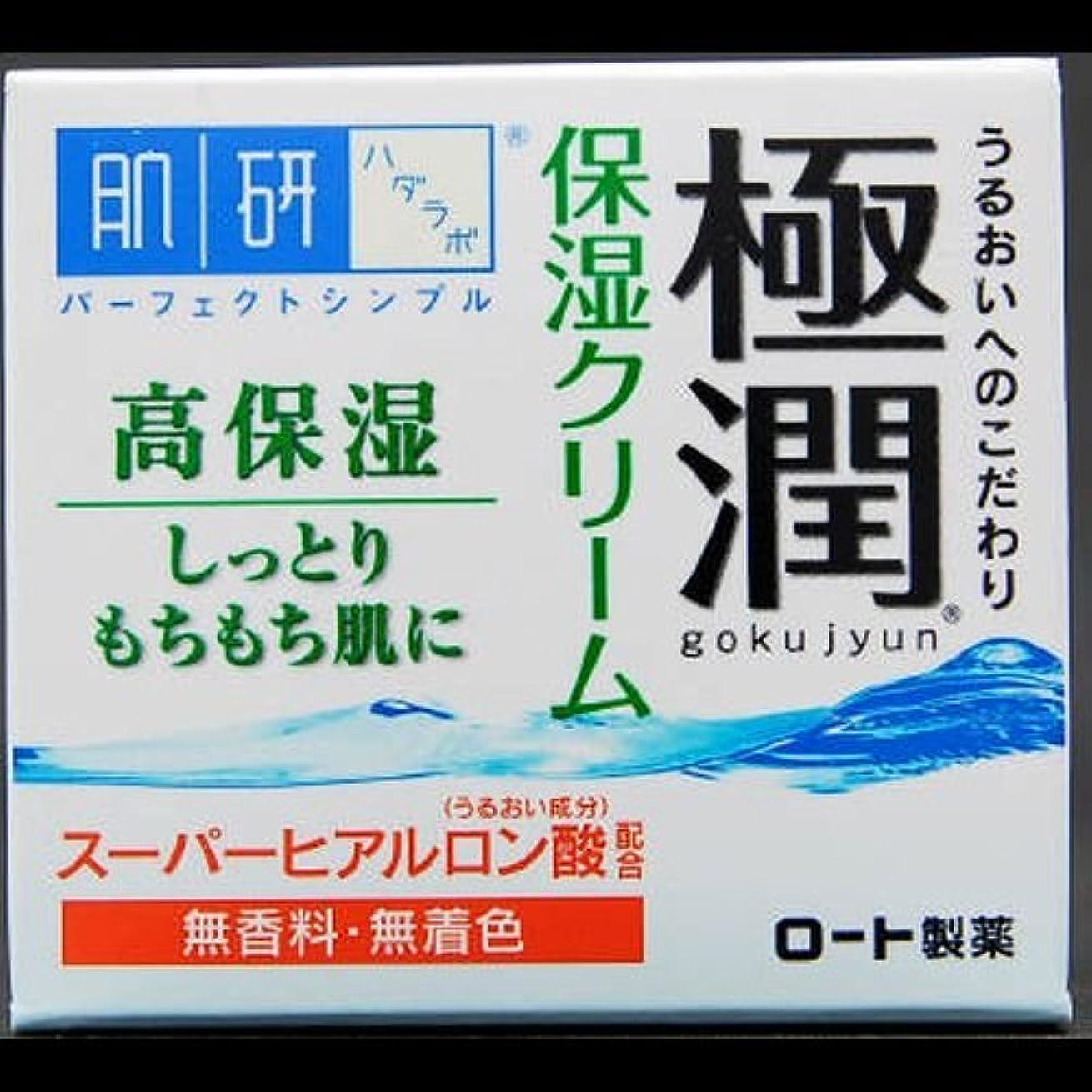 乏しいとげ驚くべき【まとめ買い】肌研 極潤 ヒアルロンクリーム 50g ×2セット