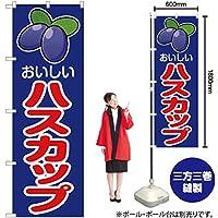 のぼり旗 おいしい ハスカップ JA-169 (受注生産)【宅配便】 [並行輸入品]