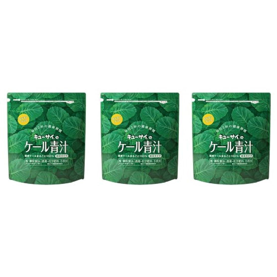 鎮静剤インポートパイルキューサイ ケール青汁(粉末タイプ)カテキンプラス 420g 3袋