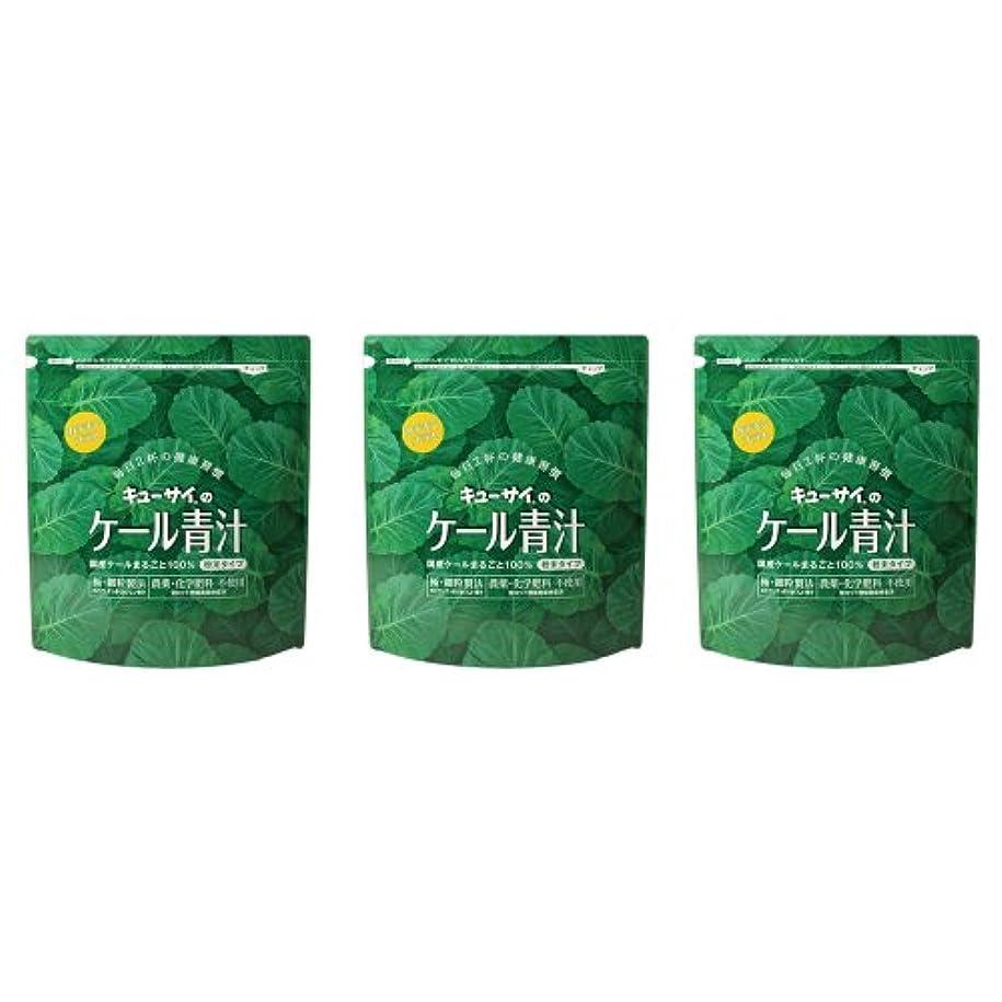 廃棄するバター結び目キューサイ ケール青汁(粉末タイプ)カテキンプラス 420g 3袋