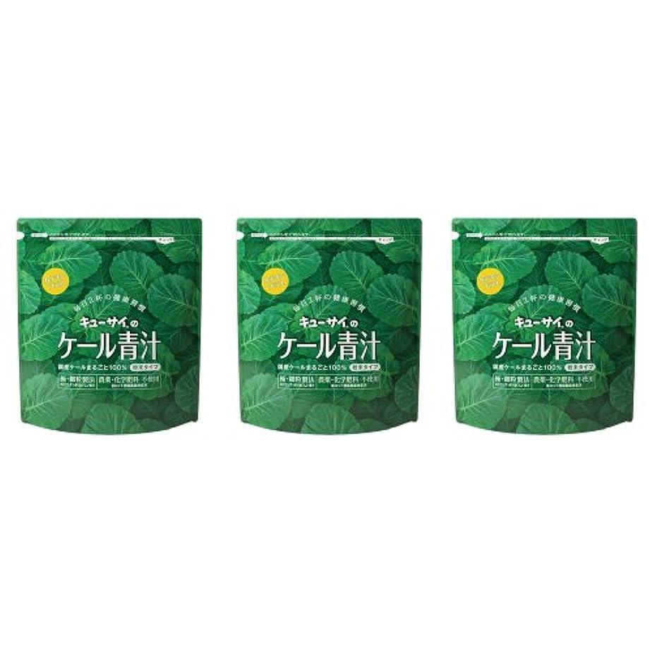 有力者ソブリケット杭キューサイ ケール青汁(粉末タイプ)カテキンプラス 420g 3袋