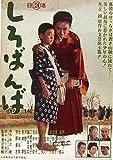 「芦川いづみデビュー65周年」記念シリーズ:第2弾 しろばんば[HPBN-181][DVD] 製品画像