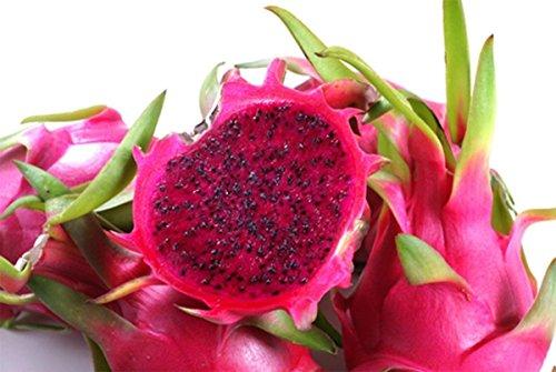旨いもんハンター 一押し 名人米須さんのドラゴンフルーツ レッド 約1kg(3-4個)×1 ビタミンCや食物繊維が豊富で低カロリー 話題のレッドピタヤ