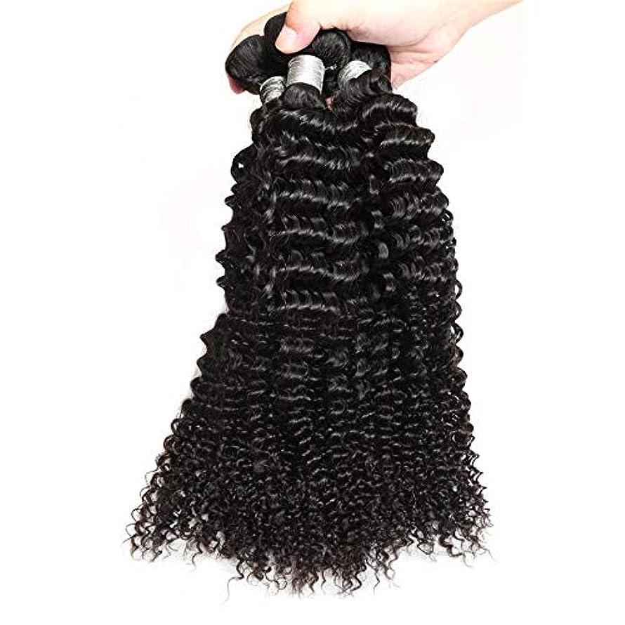 三物質静かなWASAIO 黒人女性本能的色100グラム/バンドル10「-26」のためのカーリーバンドル原油人間の髪の拡張機能ブラジル (色 : 黒, サイズ : 12 inch)