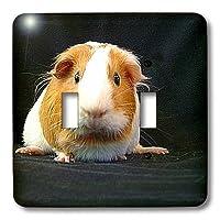 3drose LLC lsp 1062_ 2Guinea Pigダブル切り替えスイッチ