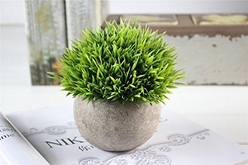 Kooyi 光触媒 インテリア グリーン フェイクグリーン 人工観葉植物 鉢植え (針草, グリーン)