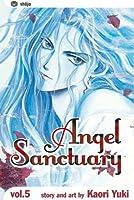 Angel Sanctuary Volume 5