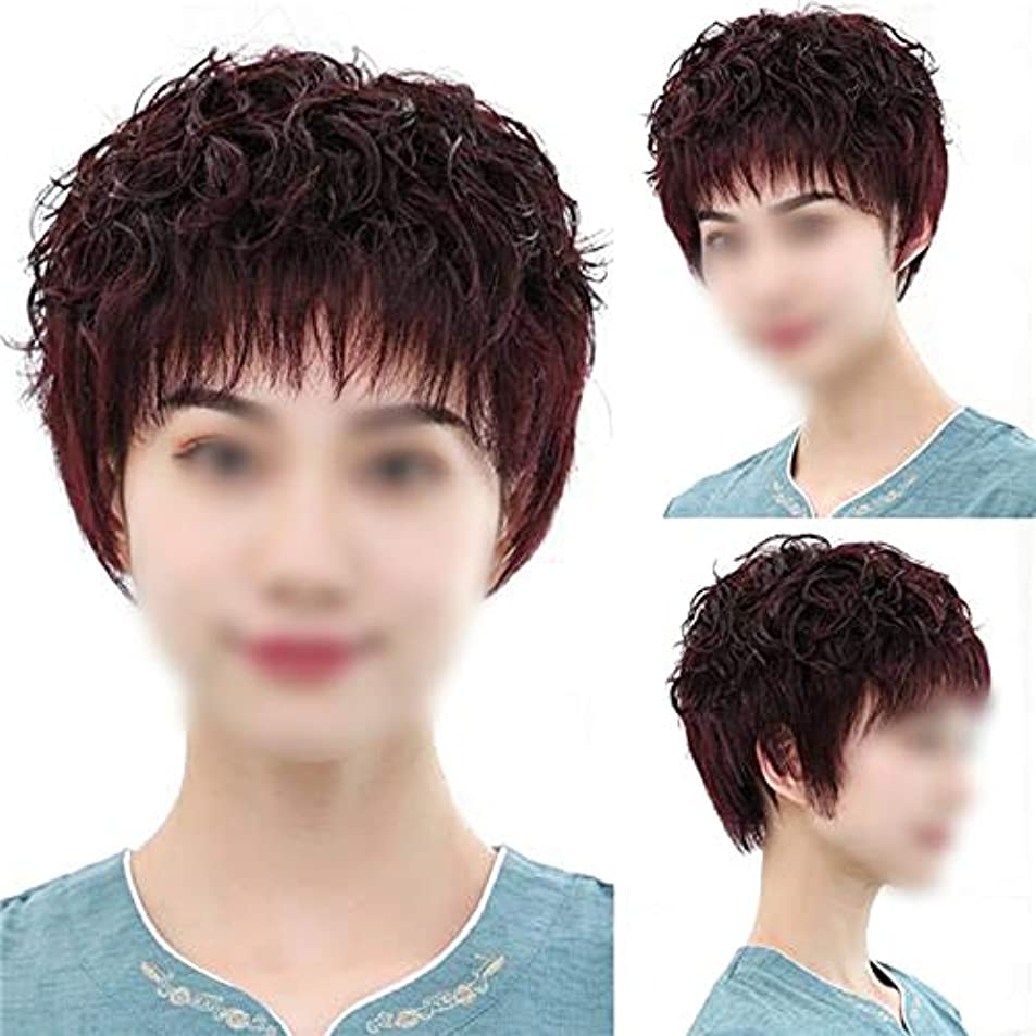 優先幸運なパブYOUQIU ウィッグショートカーリーヘアの女性のパーティードレスデイリーウィッグのための本当の髪のかつらを手織り (色 : Natural black)