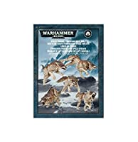 WARHAMMER SPACE WOLVES FENRISIAN WOLF PACK