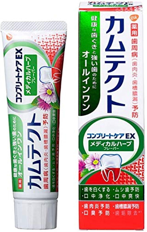 軽く一族下る[医薬部外品]カムテクト コンプリートケアEX メディカルハーブフレーバー 歯周病(歯肉炎?歯槽膿漏) 予防 歯磨き粉 105g