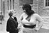 Criterion Collection: Multiple Maniacs / [Blu-ray] [Import] 画像