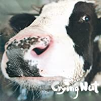 Crying Nut 5集 - The Cow of OK Pasture(韓国盤)