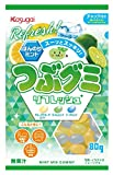 春日井製菓 つぶグミリフレッシュ 80g ×6袋