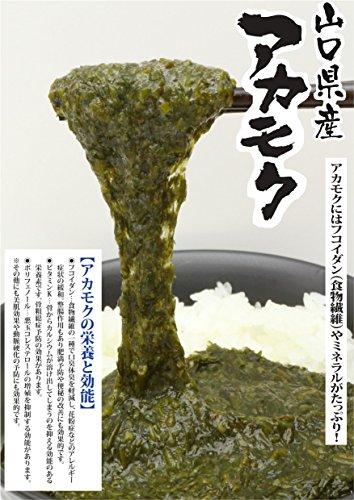 山口県産アカモク 40g×30食入(特製ぽん酢付き)