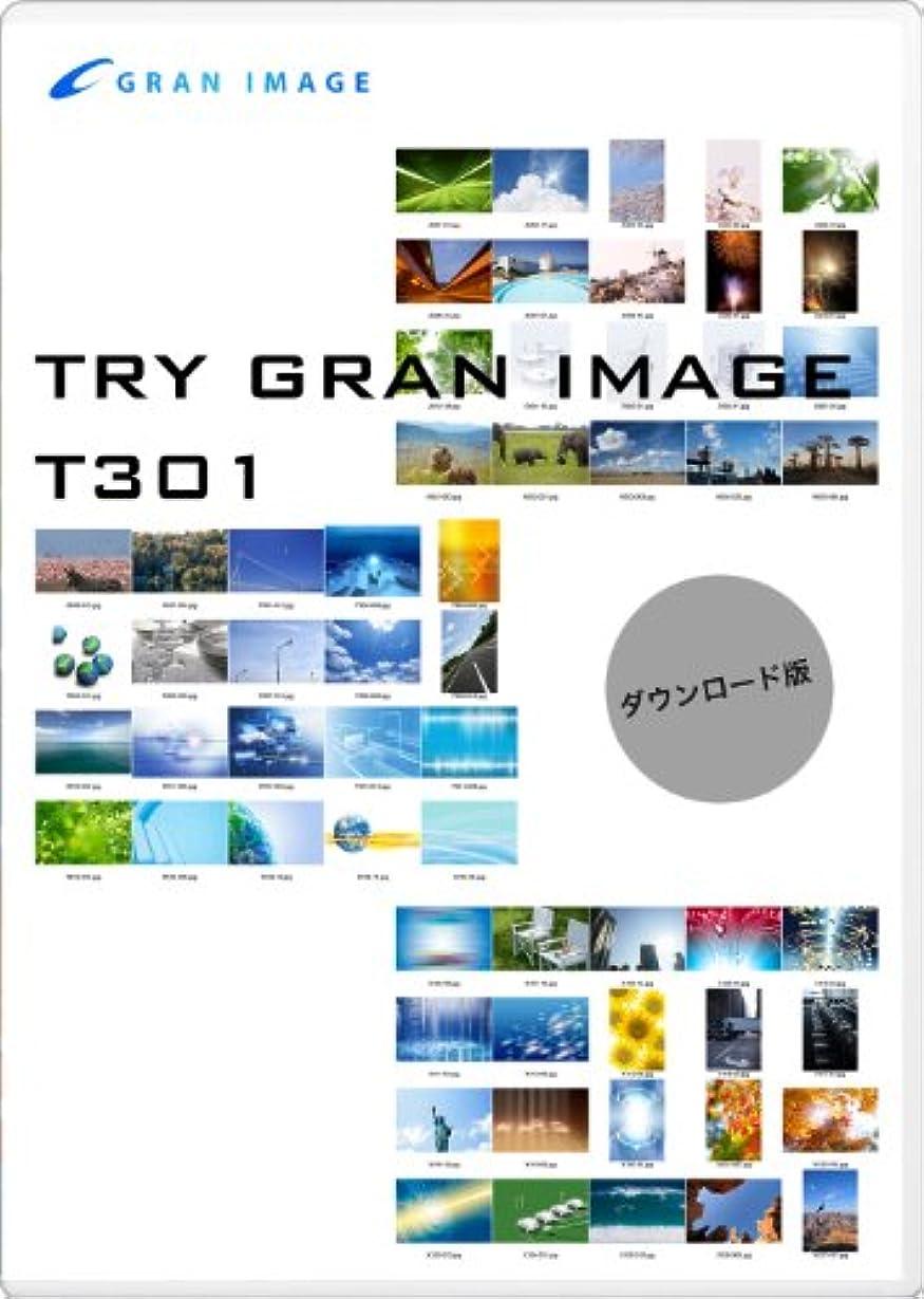 グランイメージ T301 トライグランイメージ1 写真CG [ダウンロード]