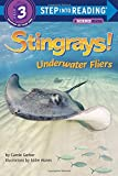 Stingrays! Underwater Fliers (Step into Reading)