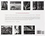 Ansel Adams: 400 Photographs 画像