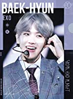 EXO ベクヒョン BAEKHYUNA4サイズクリアファイル