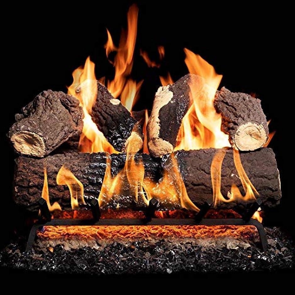 環境不健全糸GasLogGuys 18インチ キャニオンファイヤーチャレッドオーク通気口天然ガスログセット + H-Burner + 手動安全パイロット + ワイヤレスオン/オフ壁スイッチキット