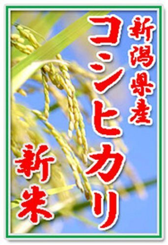 【新米29年産 無洗米】田辺さん家の新潟県産コシヒカリ100...