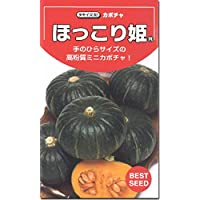 カボチャ 南瓜 種子 ほっこり姫 かぼちゃ (10粒)