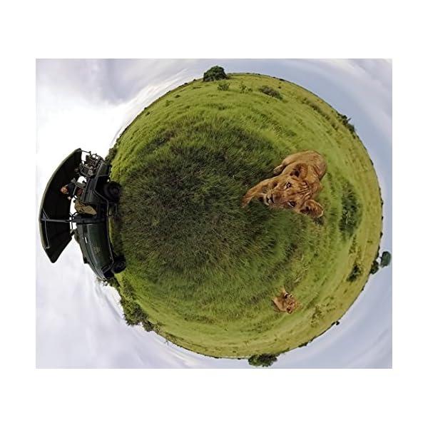 【国内正規品】GoPro Fusion 360...の紹介画像5