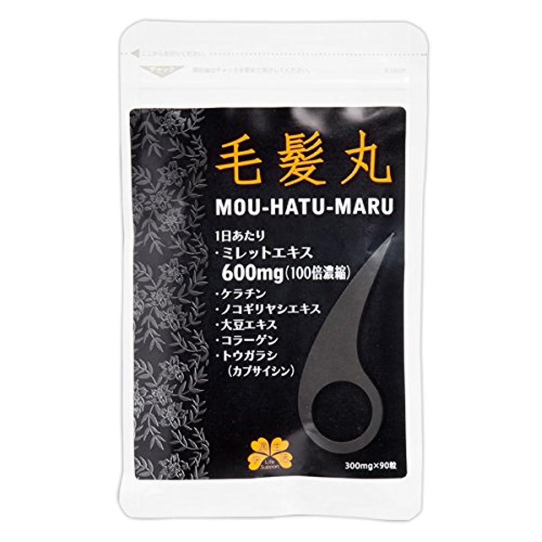 適応する電気陽性場合毛髪丸 合計3袋セット(2+1袋)