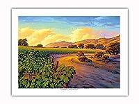 ブドウ畑の夕暮れ - ワインカントリーアート によって作成された -プレミアム290gsmジークレーアートプリント - 46cm x 61cm