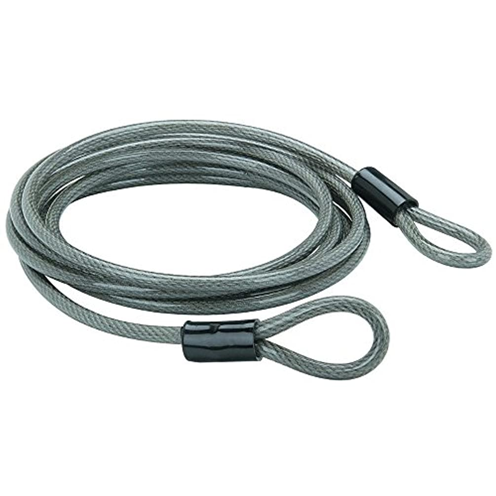 トランクライブラリ石パイプBunker Hill Security Braided Stainless Steel Security Cable, 7 ft. x 3/8 in by Bunker Hill Security