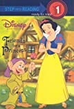 Friends for a Princess (Disney Princess (Pb))