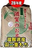 28年産 『特別栽培米』滋賀県産羽二重モチ(もち米) 27kg【白米】