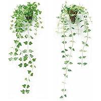 【壁に掛けれるインテリアグリーン】光触媒加工 アイビー&ポトス壁掛け2個セット