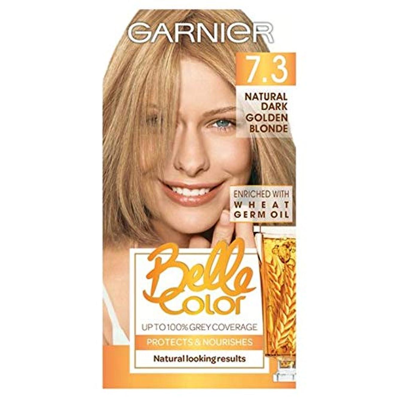 進行中アストロラーベ伝統的[Belle Color] ガルニエベルカラー7.3暗い金色のブロンド - Garnier Belle Color 7.3 Dark Golden Blonde [並行輸入品]
